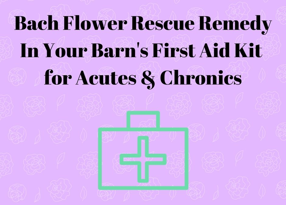 Rescue Remedy In Your Barn's First Aid Kit … Part 2 -> Chronics